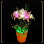 LED 盆景 DL-LL01