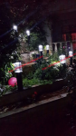 草坪灯--伊拉克别墅