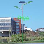 双臂太阳能路灯 DL-SS018