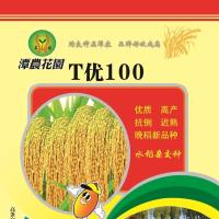 T优100