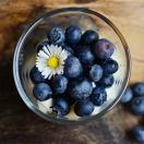 现货秘鲁蓝莓